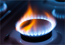 Natural Gas and Renewable Fuel